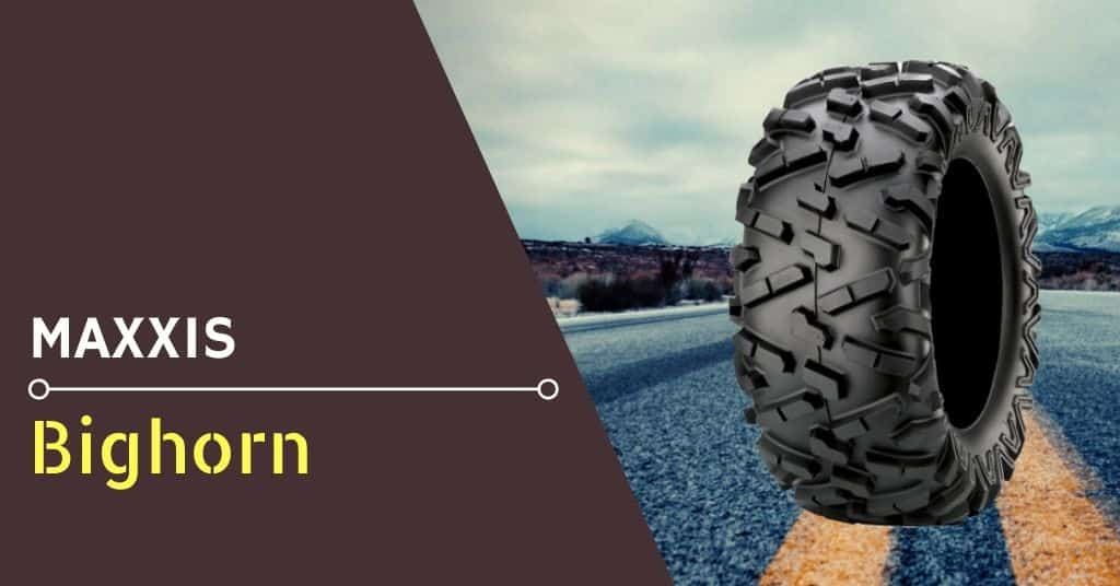 my-review-of-the-maxxis-bighorn-tire
